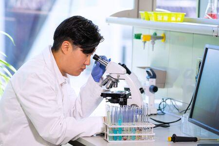 Asiatischer Wissenschaftler, der im Labor arbeitet. Doktor, der mikrobiologische Forschung macht. Laborwerkzeuge: Mikroskop, Reagenzgläser, Ausrüstung. Biotechnologie, Chemie, Bakteriologie, Virologie, DNA und Gesundheitswesen. Standard-Bild