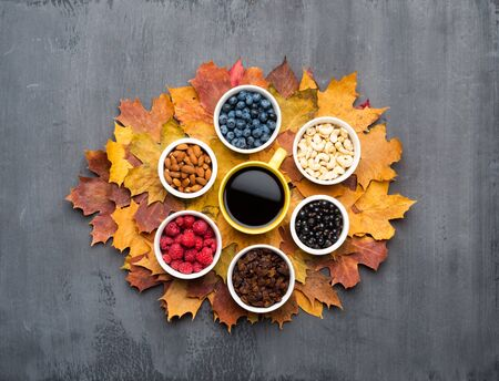 Seasonal autumn background. Frame of colorful maple leaves, raisins, nuts and berries over grey