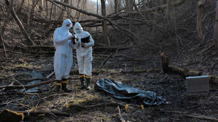 Detectives are collecting evidence in a crime scene. Forensic specialists are making expertise. Police investigation in a forest.