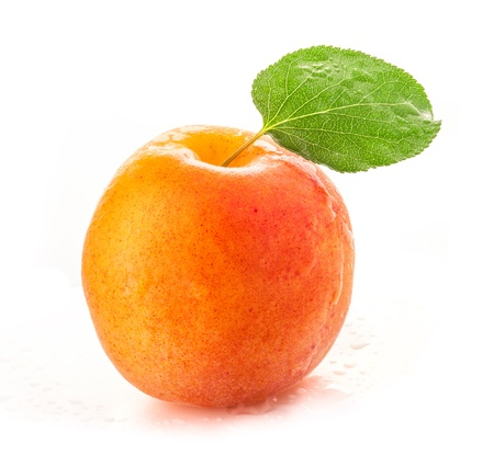 apricot: Apricot with green leaves and water drops