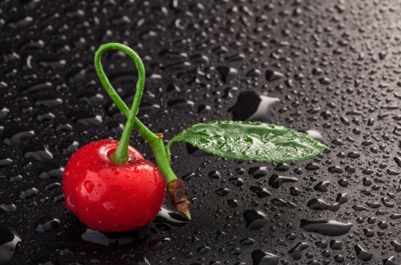 Cherry on a black background with water drops  contains space for text  photo