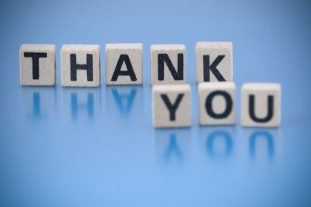 thanks a lot: Text THANK YOU made of letters on the wooden blocks