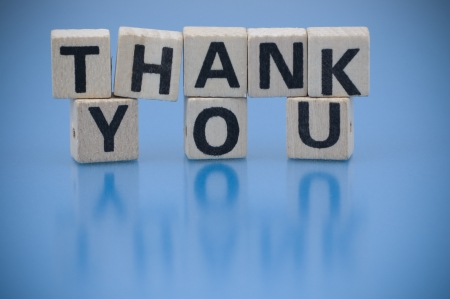 Text THANK YOU made of letters on the wooden blocks Stock Photo - 18007191