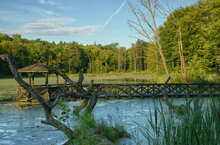 Wooden Footbridge On Water Pond Royalty Free Stock Photo, Pictures ...