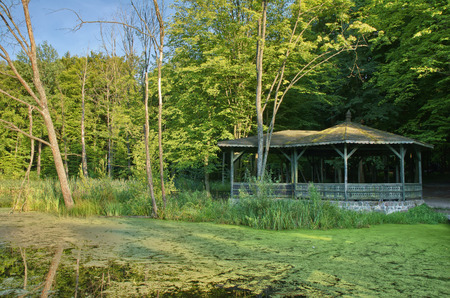 masuria: Wooden arbor on a pond shore in the middle of forest, Masuria, Poland Stock Photo