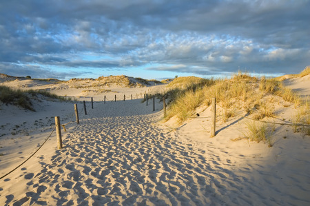 Route through moving dunes in Slowinski National Park just before sunset, Poland