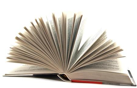 novel: pages of the novel