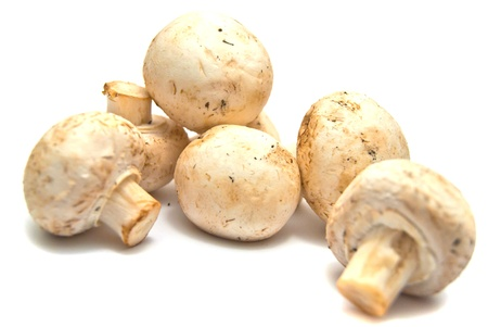 fresh mushrooms on white background Stock Photo