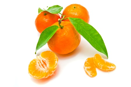 fresh tangerines on a branch on white background photo
