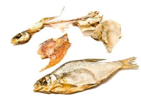 stockfish, skin and skeleton on white background photo