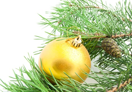 fur tree: fur tree branch with cones and Christmas tree toy on white background