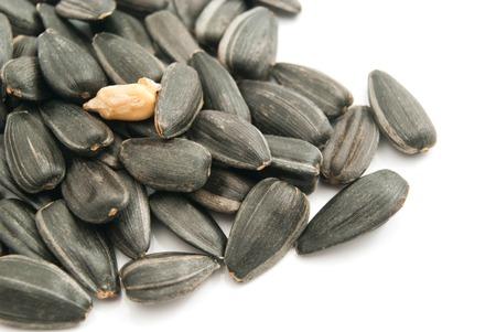 semillas de girasol: mont�n de semillas de girasol detalle en blanco