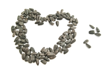 semillas de girasol: corazón de las semillas de girasol en blanco