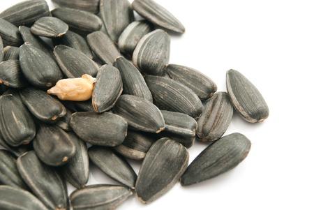 semillas de girasol: montón de semillas de girasol en el primer blanco
