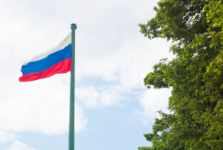 russian federation: flag of the Russian Federation and green tree Stock Photo