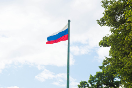 russian federation: flag of the Russian Federation and tree Stock Photo