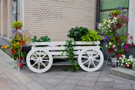 wagon with flowers near the building wall