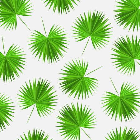 vector pattern triangular leaves of palm trees
