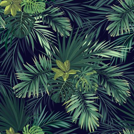 Teste padrão exótico botânico desenhado mão sem emenda do vetor com as folhas de palmeira verdes no fundo escuro. Ilustración de vector