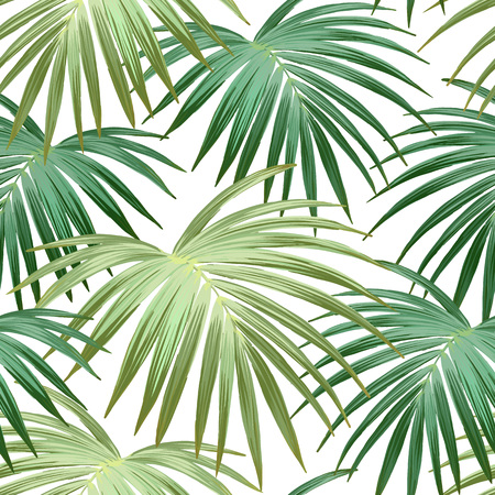 Tropical background with jungle plants. Seamless vector tropical pattern with green palm leaves.