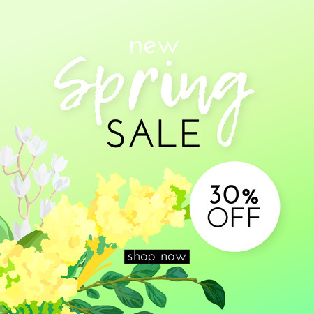 Floral spring design with white and yellow flowers, green leaves, eucaliptus and succulents on bright background. Template for sale banner or flyer. Vector illustration. Ilustração