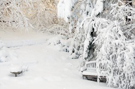 Photograph of snow-covered garden including birdbath and garden bench Stock Photo