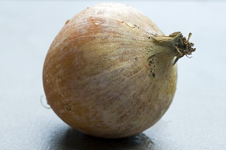 Photograph of a whole unpeeled dewy fresh onion