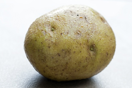 A photograph of a dewy whole unpeeled brown potato Stock Photo