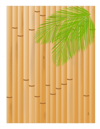 A background of a bamboo fence with palm fronds in the upper right corner Stock Photo - 13613101