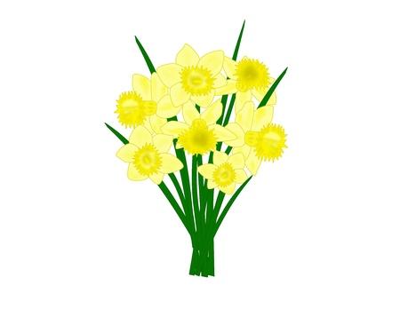 수선화 꽃의 꽃다발의 그림 스톡 콘텐츠