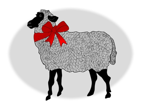 A wooly black faced sheep wearing a red ribbon