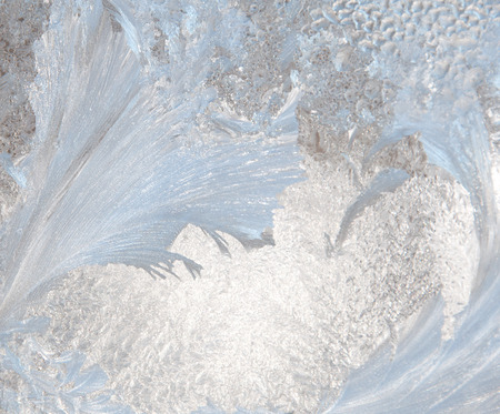 ephemeral: A photograph of ice crystals formed in the shape of feathers on a windowpane