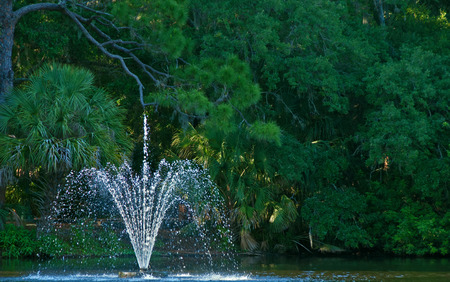 A photograph of a refreshing fountain in a small lake in a wooded area Stock Photo