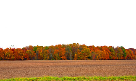 A panoramic photograph of a harvested field in front of trees in autumn color