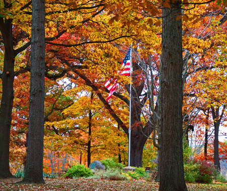 A United States flag in the midst of colorful fall leaves in a park setting