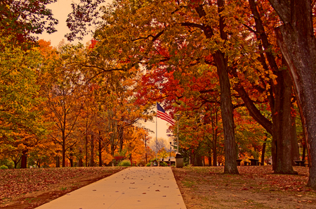 A walkway leading to the United States flag through Autumn colored trees
