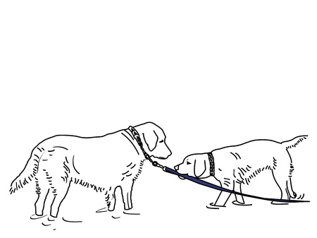 A line drawing of two dogs playing on the beach â?? one is pulling the other into the water by a leash