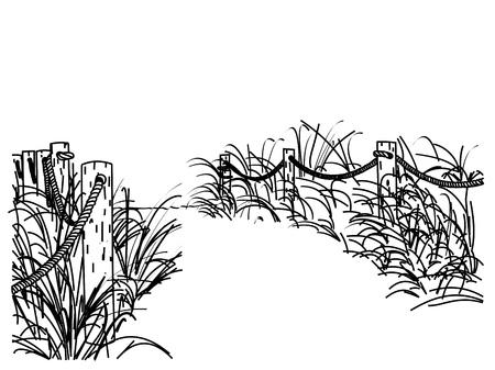 maleza: Una línea que dibuja el camino arenoso a la playa