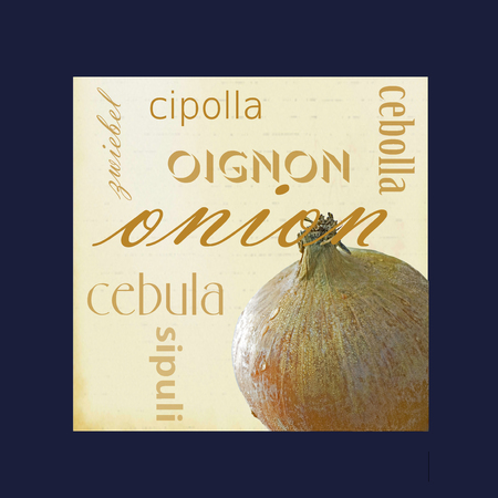 A photograph of an onion bulb framed in dark blue surrounded by the word onion in several different languages