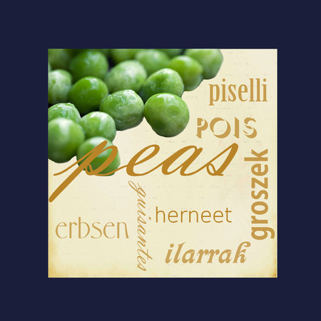 A photograph of a green peas framed in dark blue surrounded by the word peas in several different languages. Stock Photo