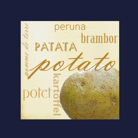 pomme de terre: A photograph of a potato framed in dark blue surrounded by the word potato in several different languages.
