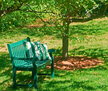 A photo of a green garden bench and two green-striped pillows resting under two crab apple trees on a sunny afternoon.