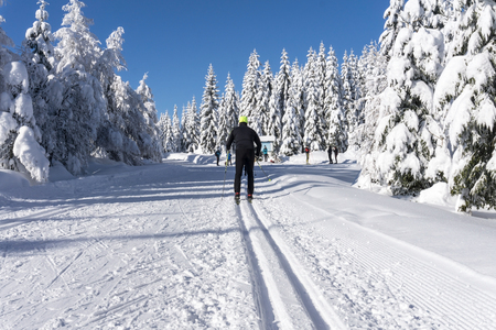 crosscountry: Winter road in mountains. Male skier on groomed ski trails for cross-country. Trees covered with fresh snow in sunny day in Giant, Giant Mountains, Poland. Stock Photo