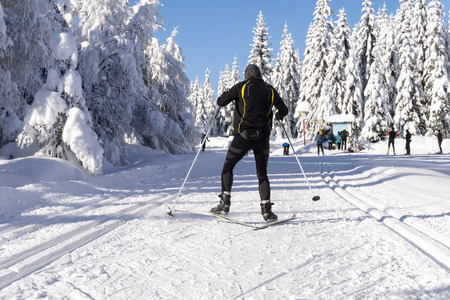 Winter road in mountains. Male skier on groomed ski trails for cross-country. Trees covered with fresh snow in sunny day in Giant, Giant Mountains, Poland. Stock Photo