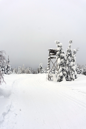 deer stand: Deer stand - tree stand - lookout tower in mountains. Trees covered with fresh snow. Groomed ski trails for cross-country. Winter mountain landscape. Stock Photo