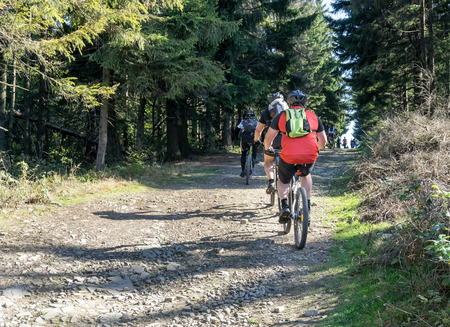 Group of cycling tourists on a gravel road in the mountains. Sunny autumn or summer day. Фото со стока