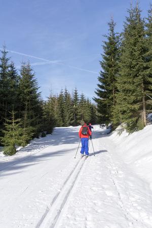 Two cross-country Skiers runs on groomed ski track in sunny winter day. Winter mountain landscape: Jakuszyce, Jizera Mountains, Poland. Фото со стока