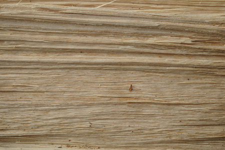 Wood breakthrough texture. Natural material texture or background. Фото со стока