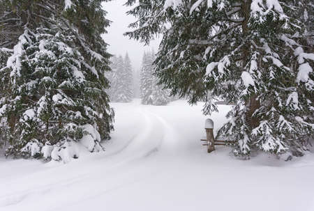 Winter landscape with wooden chalet by the road at the edge of the forest. Fir forest covered with snow. Alps, Tirol, Austria, Europe. Reklamní fotografie
