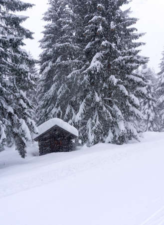 Winter landscape with wooden chalet by the road at the edge of the forest. Fir forest covered with snow. Alps, Tirol, Austria, Europe. Vertical image.